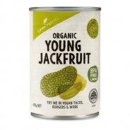 Jackfruit, Young & Green  (Organic, Vegan) - 400g