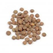 Lentils, Brown (organic) - 1kg