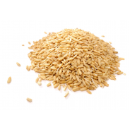 Wheat Grain for Milling or Sprouting (NZ organic, Bulk) - 3kg