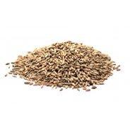 Rye Grain (Organic, Bulk) - 25kg